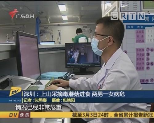 (DV现场)深圳:上山采摘毒蘑菇进食 两男一女病危