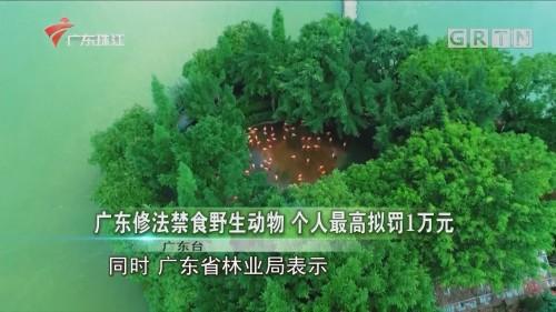 广东修法禁食野生动物 个人最高拟罚1万元