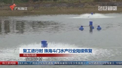 复工进行时 珠海斗门水产行业陆续恢复