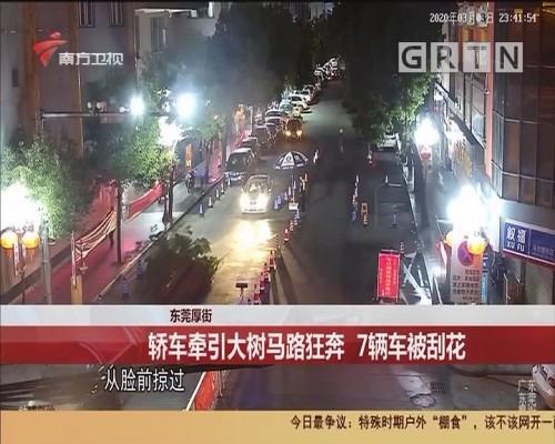 东莞厚街 轿车牵引大树马路狂奔 7辆车被刮花
