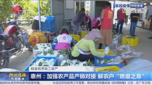 广东各地全力保障农渔业复耕复产