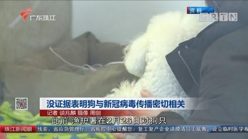 没证据表明狗与新冠病毒传播密切相关