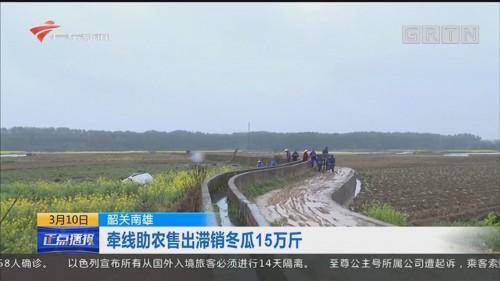 韶关南雄:牵线助农售出滞销冬瓜15万斤