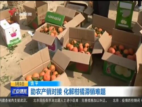 饶平:助农产销对接 化解柑橘滞销难题