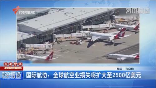 国际航协:全球航空业损失将扩大至2500亿美元
