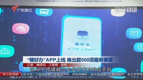 """""""穗好办""""APP上线 推出超500项服务事项"""