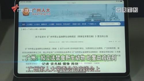 广州:拟立法禁食野生动物 蛇鳖田鸡在列