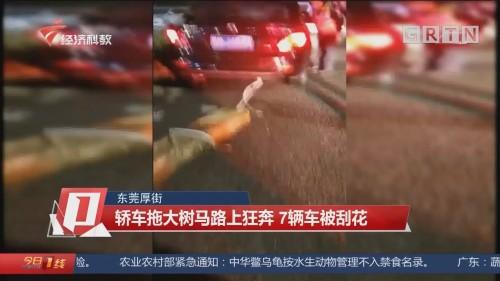 东莞厚街:轿车拖大树马路上狂奔 7辆车被刮花