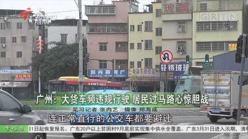 广州:大货车频违规行驶 居民过马路心惊胆战