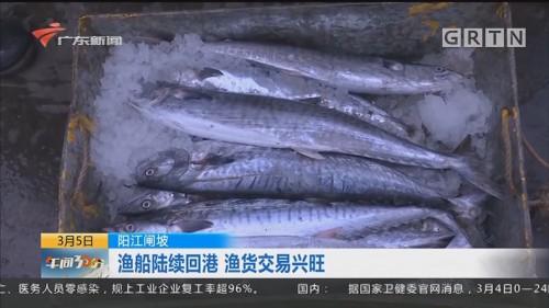 阳江闸坡:渔船陆续回港 渔货交易兴旺