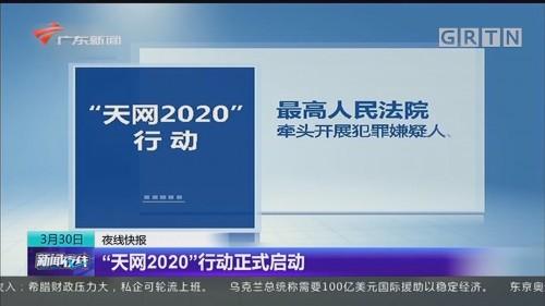 """""""天网2020""""行动正式启动"""