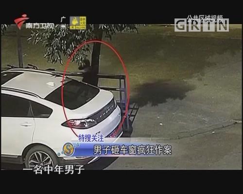 男子砸車窗瘋狂作案