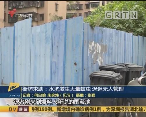 (DV现场)街坊求助:水坑滋生大量蚊虫 迟迟无人管理