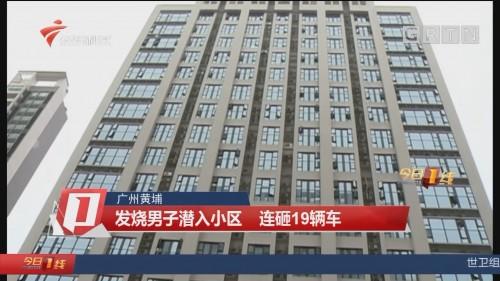 广州黄埔:发烧男子潜入小区 连砸19辆车