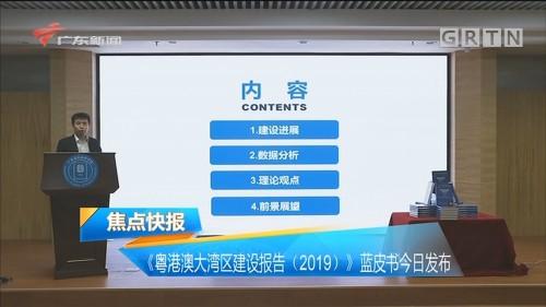 《粤港澳大湾区建设报告(2019)》蓝皮书今日发布
