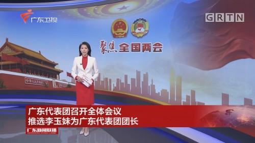 广东代表团召开全体会议 推选李玉妹为广东代表团团长