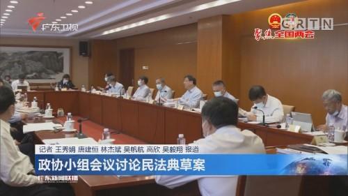 政协小组会议讨论民法典草案