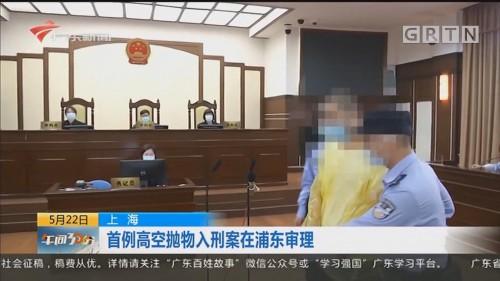 上海 首例高空抛物入刑案在浦东审理