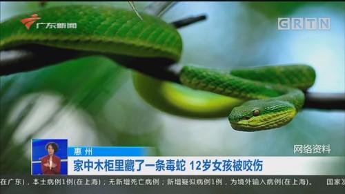 惠州:家中木柜里藏了一条毒蛇 12岁女孩被咬伤