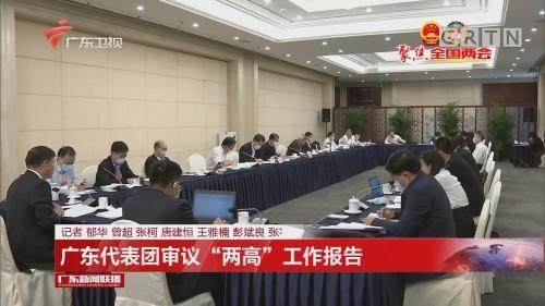 """广东代表团审议""""两高""""工作报告"""