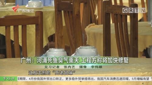 廣州:河涌死魚臭氣熏天 工程方稱將加快修復