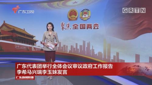 广东代表团举行全体会议审议政府工作报告 李希马兴瑞李玉妹发言