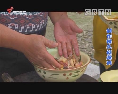 制作树头菇蒸鸡