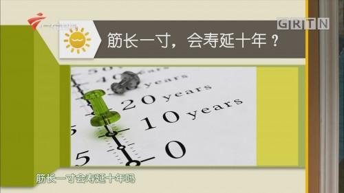 [HD][2020-06-24]健康有道:筋长一寸,会寿延十年?
