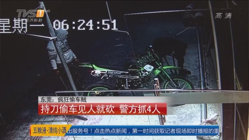 东莞:疯狂偷车贼 持刀偷车见人就砍 警方抓4人