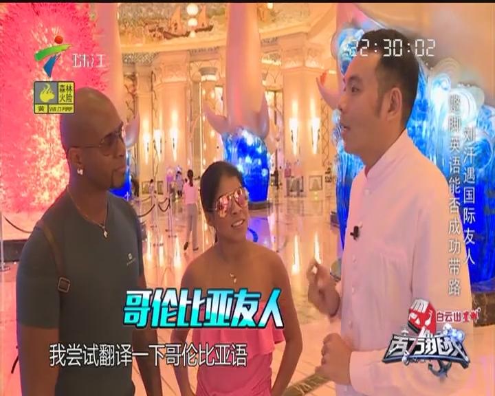 阮兆祥毛琳接受特别任务 与海豚亲密接触