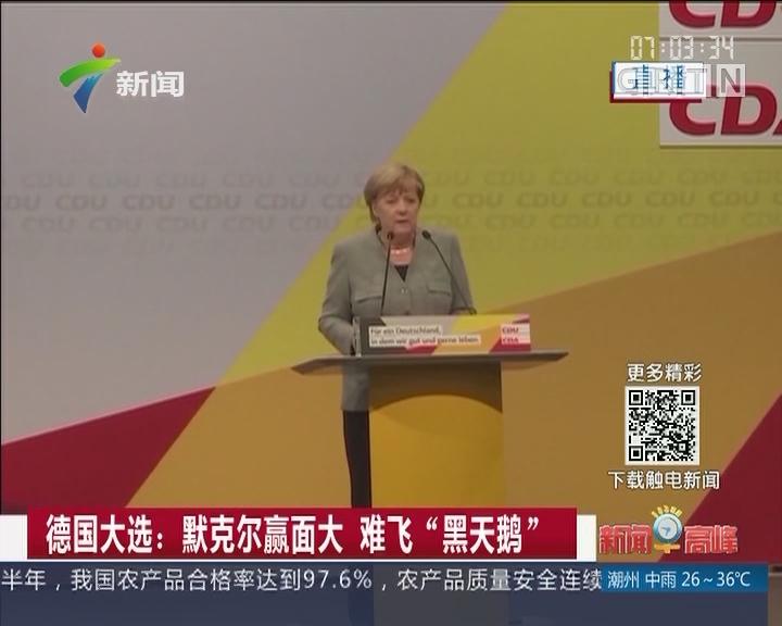 """德国大选:默克尔赢面大 难飞""""黑天鹅"""""""