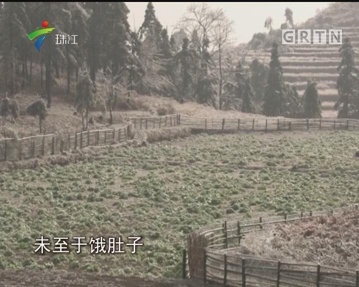 阳山:气温缓慢回升 高山仍然结冰