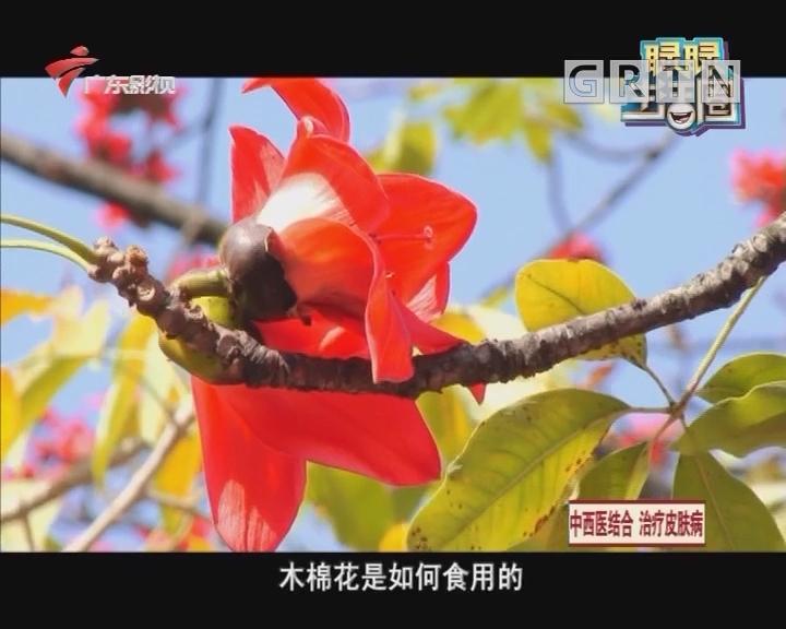 三月是木棉花开的季节