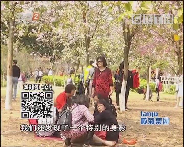 """华农成""""网红景区""""不负春光也需文明赏花"""