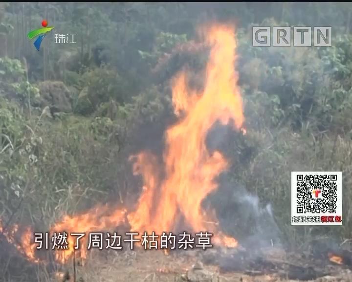 茂名:清明拜祭频现山火 职能部门进村驻守