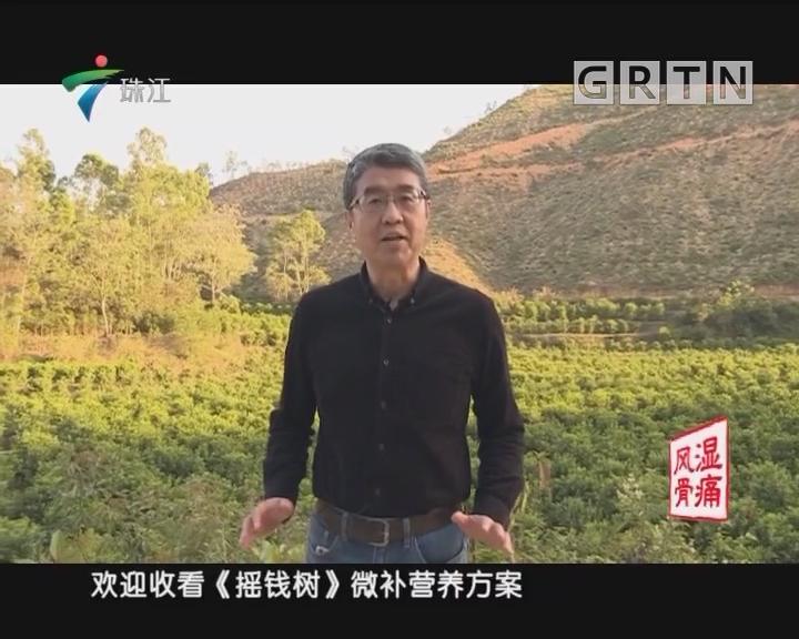 [2018-04-23]摇钱树:高产优质水培菜