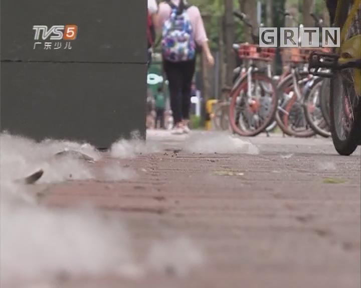 [2018-05-22]南方小记者:木棉飘絮 夏天到来