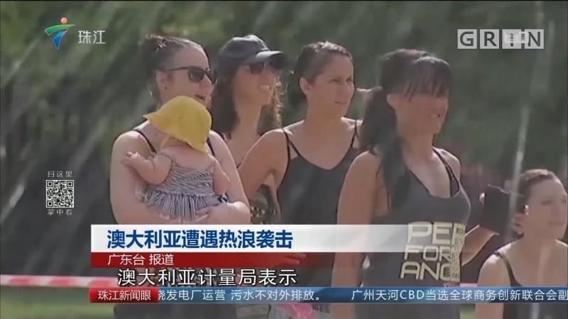 澳大利亚遭遇热浪袭击