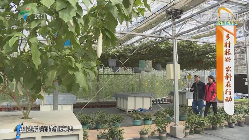 [HD][2018-12-17]摇钱树:乡村振兴 农科在行动