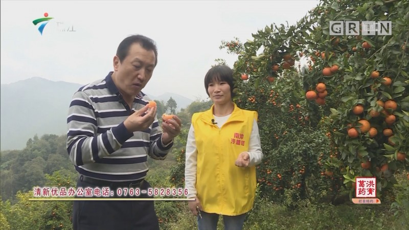 [HD][2019-01-07]摇钱树:清新优品 砂糖桔