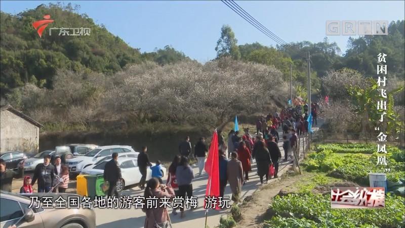 "[HD][2019-01-09]社会纵横:贫困村飞出了""金凤凰"""