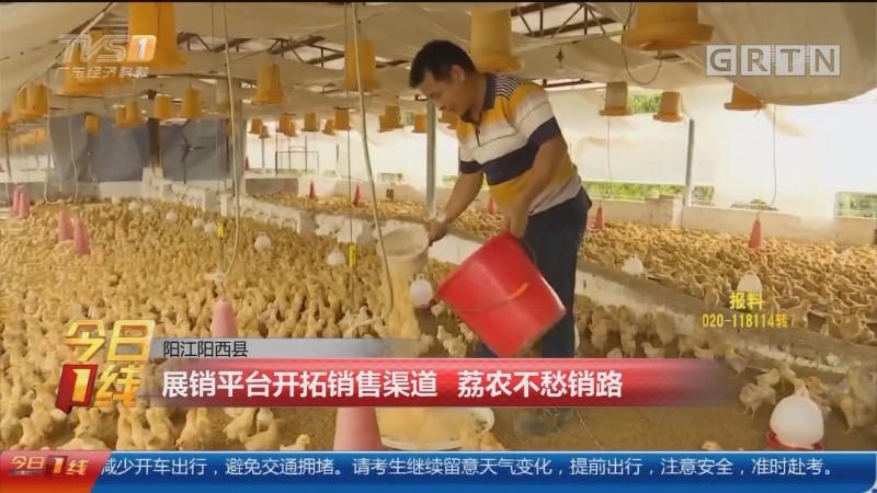 阳江阳西县:展销平台开拓销售渠道 荔农不愁销路