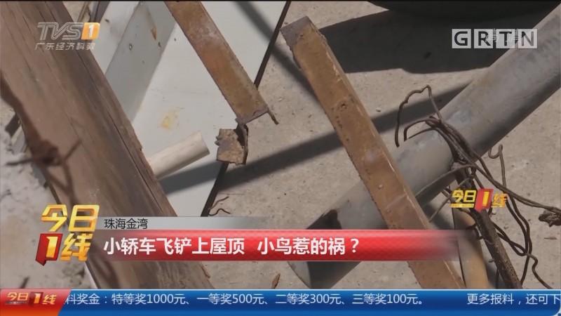 珠海金湾:小轿车飞铲上屋顶 小鸟惹的祸?