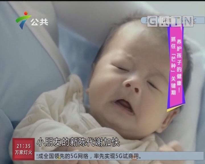 """唔系小儿科:抓住""""芒种""""关键期 养护孩子的健康!"""