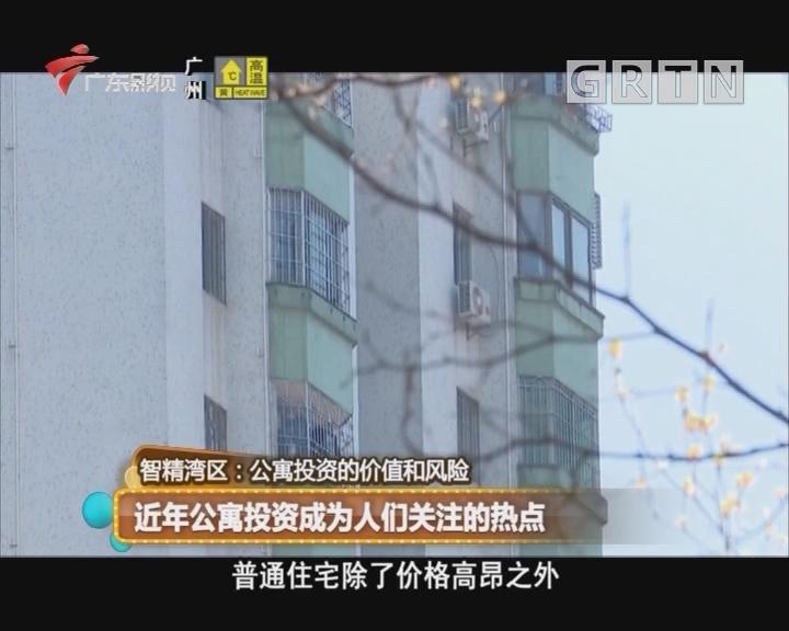 智精湾区:近年公寓投资成为人们关注的热点