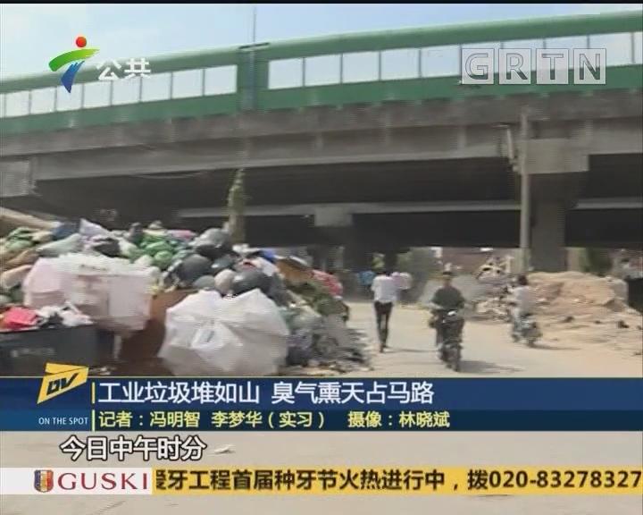 (DV现场)工业垃圾堆如山 臭气熏天占马路