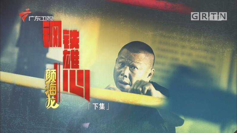 [HD][2020-03-01]南粤警视:钢铁雄心颜海龙(下集)