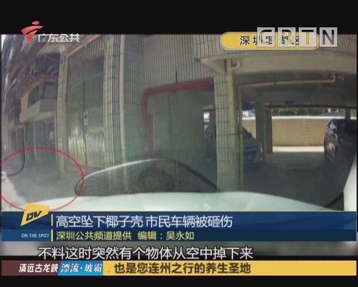 高空坠下椰子壳 市民车辆被砸伤