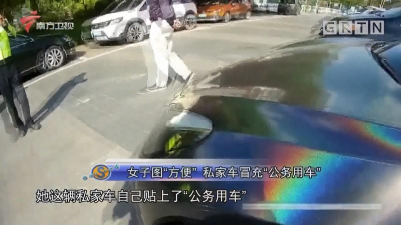 """女子图""""方便"""" 私家车冒充""""公务用车"""""""