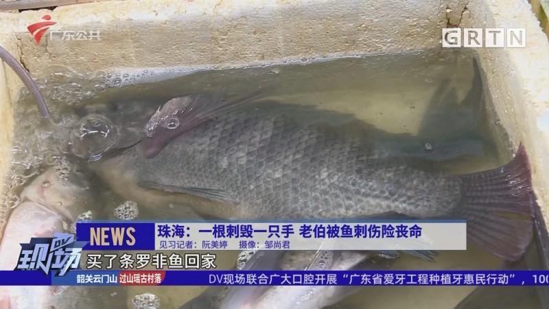 珠海:一根刺毁一只手 老伯被鱼刺伤险丧命